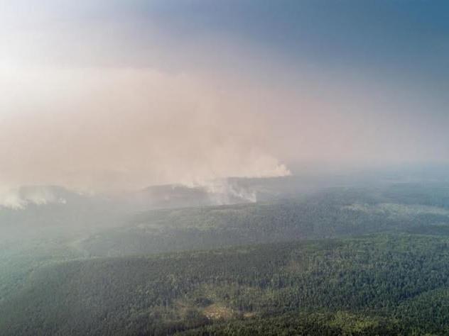 Greenpeace: «In Siberia è emergenza climatica, bruciata un'area grande come Lombardia e Piemonte messi insieme»