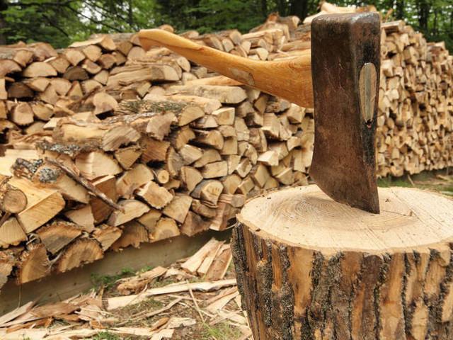 A Romeno e Salter c'è ancora tempo per prenotare le sorti legna