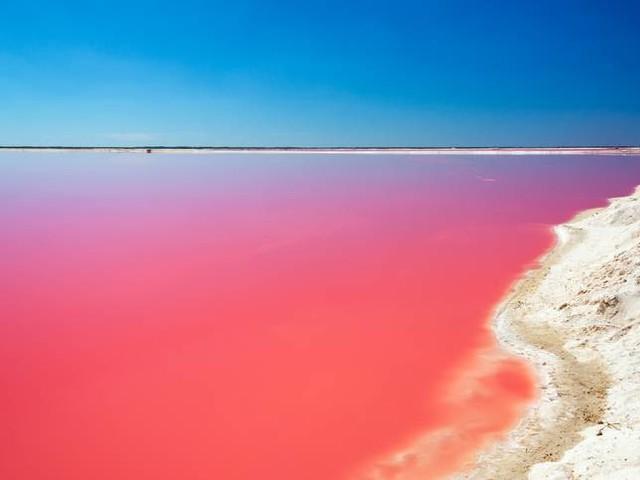 Australia, alla scoperta del Lago Hillier: il lago rosa che stupisce il mondo