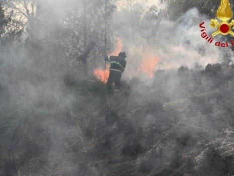 Incendi in provincia di Palermo, fiamme da Petralia a Monreale