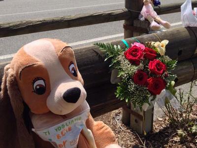 Morì in strada a soli 7 anni: benzinaio condannato a 20 mesi per l'investimento mortale di Nelda