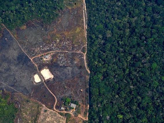 Incendi Amazzonia: è emergenza internazionale, Bolsonaro manda l'esercito a domare le fiamme