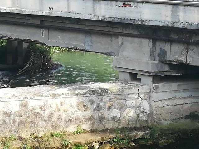L abbandono e il degrado dei monumenti trentini - Altro - Anygator.com 1c53a767c6