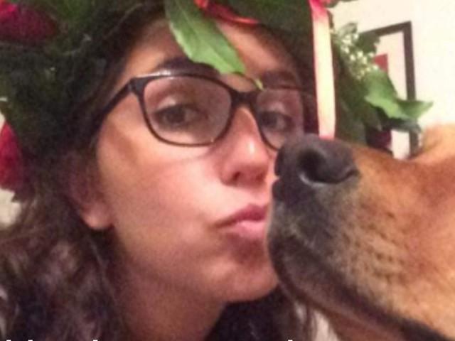 Spacciatore nasconde hashish nella siepe di un giardino: il cane di casa lo mangia e muore di overdose