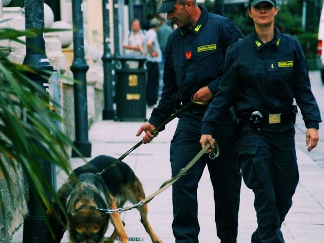 Sardegna: eroina per un milione di euro nell'albero di Natale, 21enne in manette