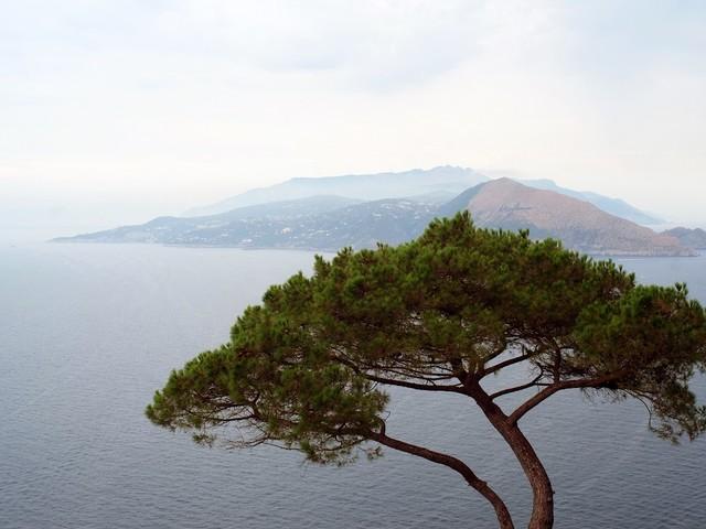 Ha aperto il Festival del Paesaggio 2019 a Capri e Anacapri. Le immagini dell'inaugurazione