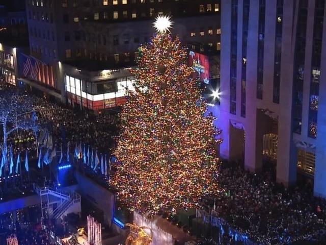 """New York, l'albero di Natale più famoso al mondo è """"figlio"""" di un italiano"""