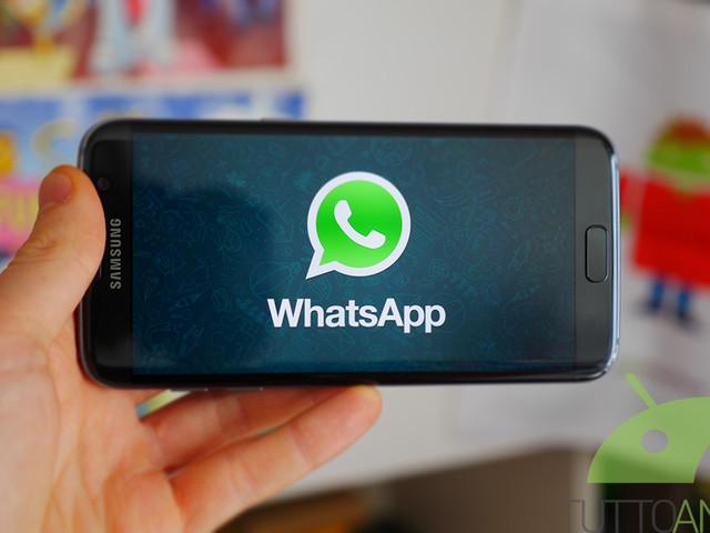 WhatsApp dovrebbe introdurre novità per le GIF e per gli adesivi