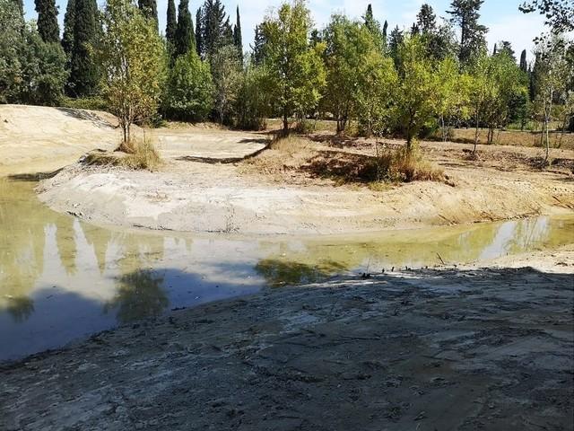 Dal PIT del Parco di San Rossore azioni concrete per contrastare il cambiamento climatico