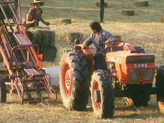 Turisti per caso, contadini per scelta: il modellowwoofer