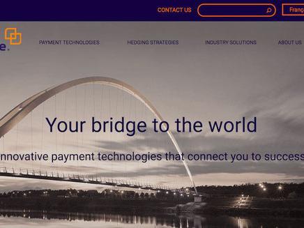 Cambridge FX partner affidabile per Forex e copertura rischi?