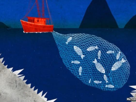 La pesca illegale in Toscana secondo ENSAMBLE