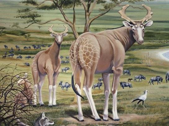 A far estinguere i mega-erbivori africani sono stati i cambiamenti ambientali e non gli uomini