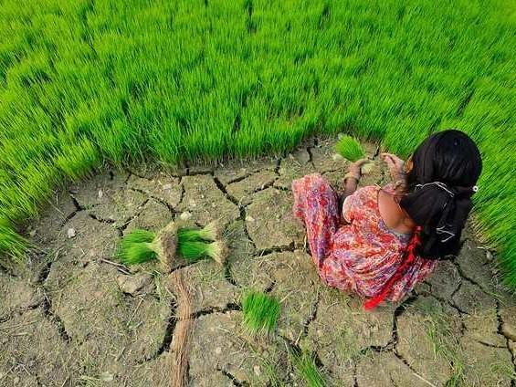 Adattamento climatico: con investimenti per 1,8 trilioni di dollari dal 2020 al 2030. Benefici netti per 7,1 trilioni (VIDEO)