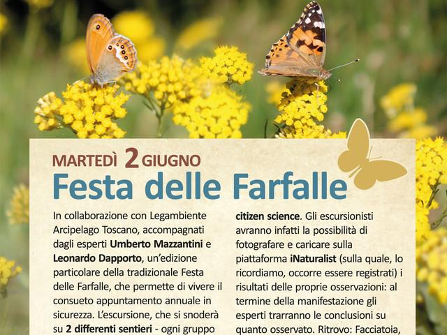 La Festa delle Farfalle il 2 giugno all'Isola d'Elba, passeggiata e citizen science al tempo del Covid-19