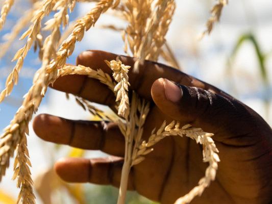 La prospettiva africana sullo sviluppo sostenibile
