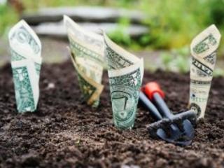 Miglior conto corrente: come sceglierlo