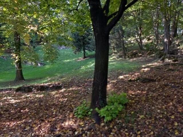 Schio, blitz anti-droga nel parco: bloccati spacciatori