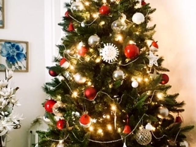 Festività con ForliToday, ecco le foto degli alberi di Natale dei nostri lettori
