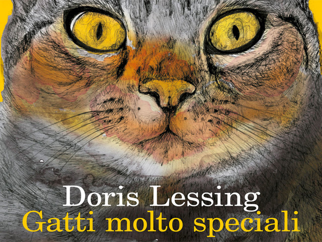 Gatti molto speciali, libro di Doris Lessing. Recensione del breve romanzo