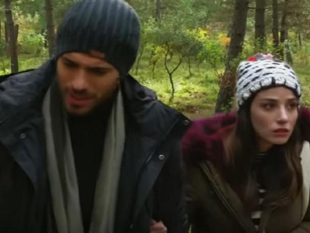 Bitter Sweet, spoiler: l'Aslan e la Pinar si smarriscono nel bosco