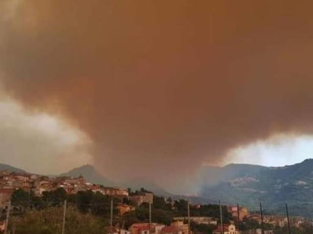 Incendi nell'Oristanese: inferno di fuoco a Santu Lussurgiu, case evacuate e fiamme nelle strade