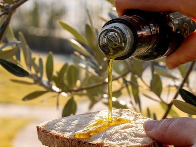 Tumori: olivicoltori italiani a sostegno di Airc