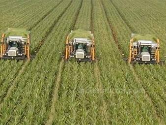 «Il contrasto ai cambiamenti climatici è il modo più efficace di tutelare i redditi degli agricoltori»