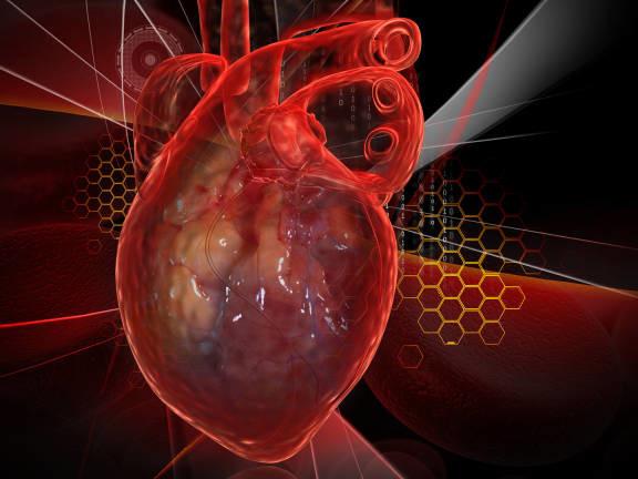 Ecco il primo cuore stampato in 3D con tessuti umani