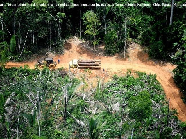 Brasile, assalto alle terre indigene nel Rondônia e terrore agrario a Bahia