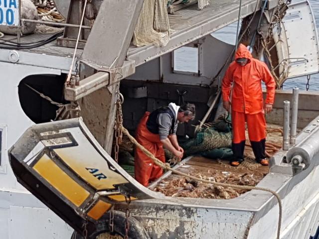 """Arcipelago pulito, in Toscana i """"pescatori spazzini"""" si moltiplicano per sei"""