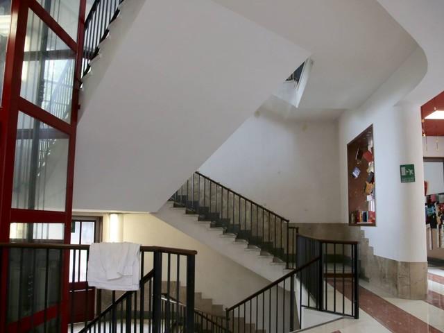A 5 anni solo in corridoio precipita dalle scale: il bambino è in fin di vita