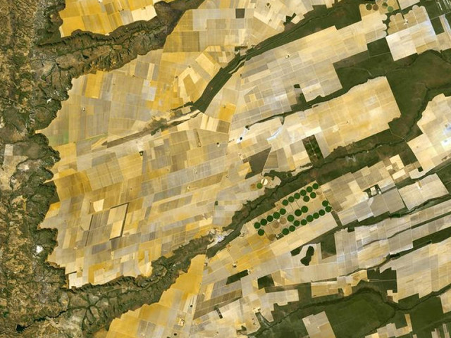Dallo Spazio alla Terra, come i satelliti possono aiutarci a coltivare e allevare meglio