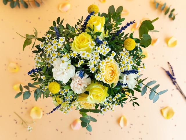 Più fiori per tutti, anche dal divano: grazie Colvin!