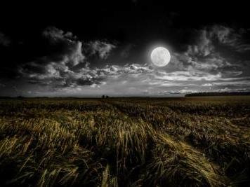 Il viaggio sulla luna insieme a Oriana Fallaci