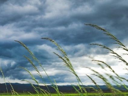 Raffiche di vento caldo in provincia «Attesi temporali anche forti in serata»