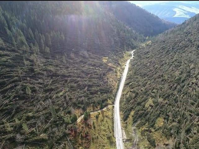 Altopiano, caduti 300 mila alberi «Come in guerra»