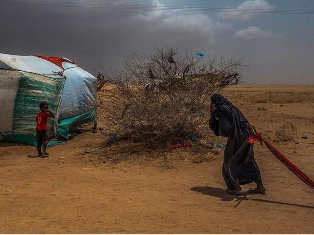 Yemen: milioni di persone a un passo dalla fame. Fermare una guerra che dura da 7 anni