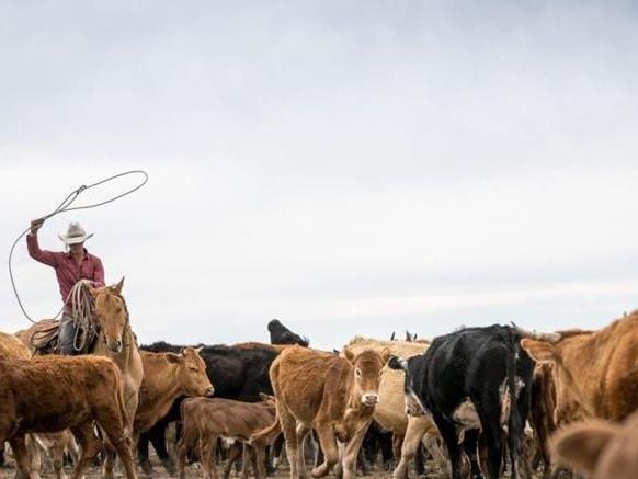 Viaggi 2021, tra ranch e piccoli borghi. Parola d'ordine: rigenerarsi