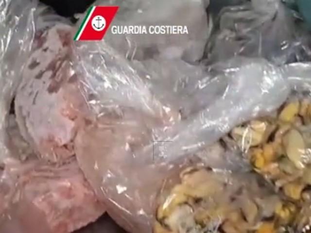 "Carne scaduta da un mese e pesce di ""provenienza sconosciuta"": sequestri e multe in due ristoranti di lusso"