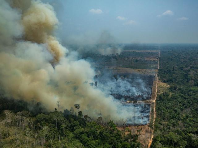Gli incendi in Amazzonia stanno peggiorando: nell'ultimo mese +196% rispetto all'anno scorso