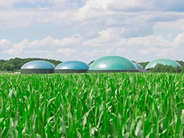 Le eccellenze del biometano italiano: dalla Calabria al Veneto e fino in Brasile