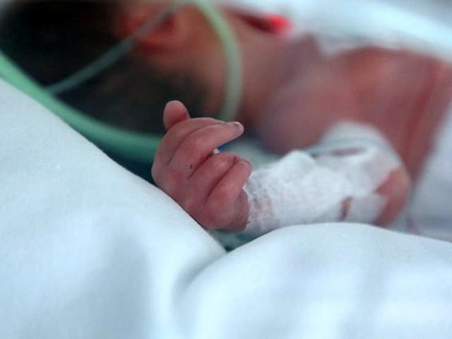 Le storie dei 'piccoli guerrieri' che lottano per la vita: agli Ospedali Riuniti le famiglie di prematuri nati a Foggia