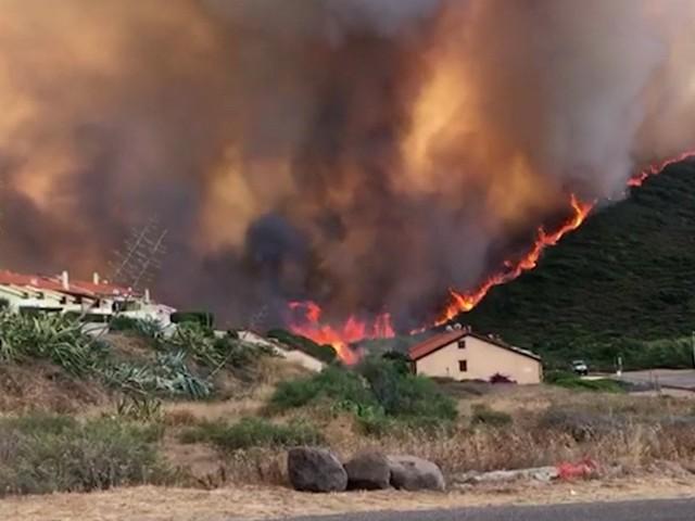 """Incendi in provincia di Oristano, almeno 20mila ettari distrutti e centinaia di persone evacuate: """"Danni incalcolabili"""". Canadair in aiuto dai Paesi Ue"""