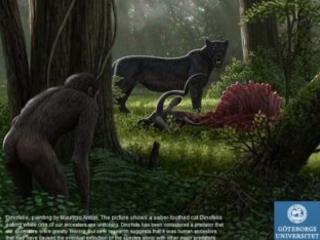 Abbiamo cominciato a causare il declino della biodiversità già milioni di anni fa, prima di diventare Homo sapiens