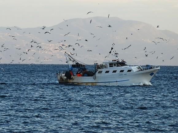 Sequestrati pescherecci italiani. Spari dalle motovedette libiche