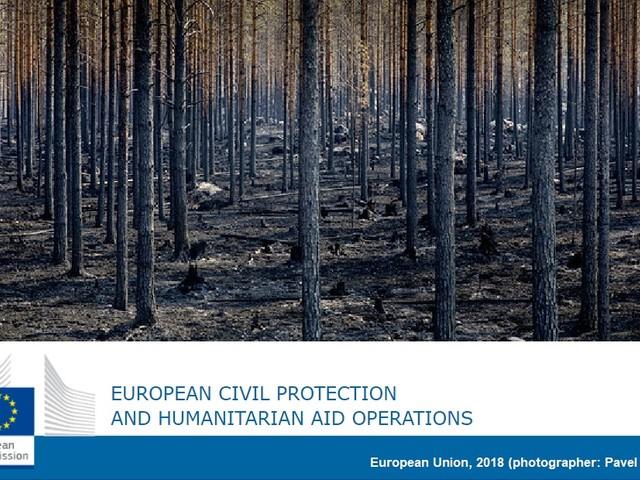 Incendi boschivi e foreste sicure e resilienti. I nuovi orientamenti Ue