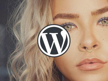15+ Best WordPress Portfolio Themes for Creatives