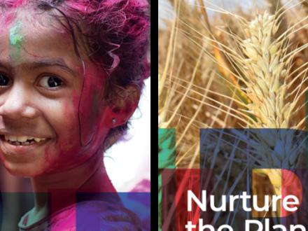 Salute e alimentazione: Mario Negri e Università Cattolica insieme fondano l'Italian institute for planetary health