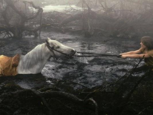 La storia infinita: il cavallo è morto per davvero durante le riprese?